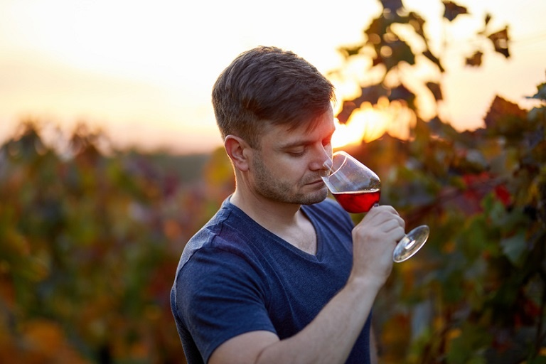 Portrait of man tasting red wine in a vineyard at sunset.